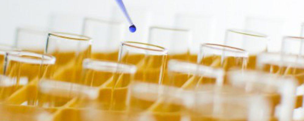 Ya tenemos accessible la clonación y/o regeneración del cabello humano en el 2014?